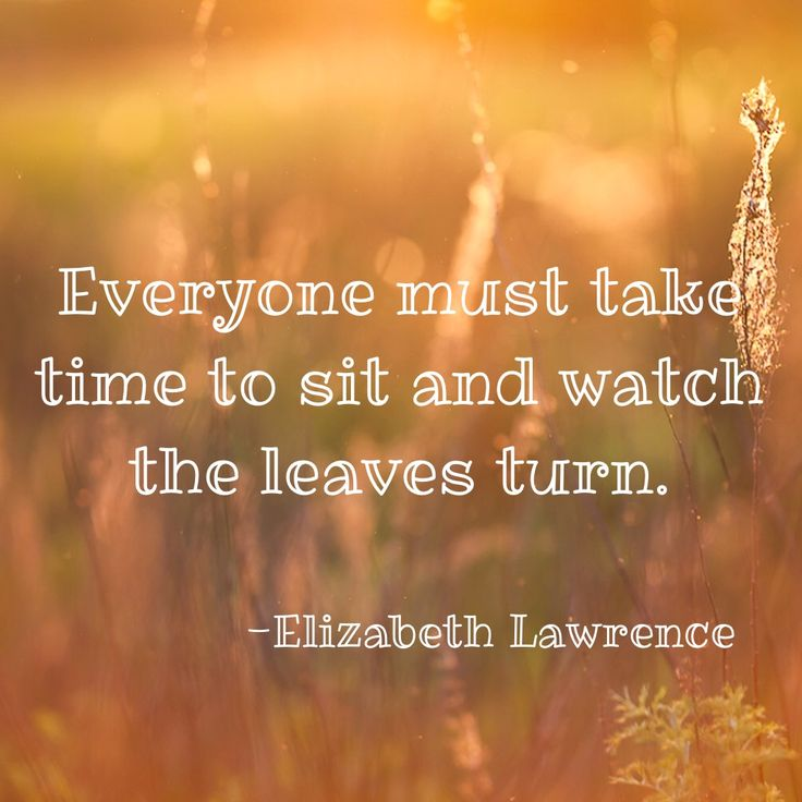 Inspirational Quotes Fall Leaves Best Quote 2017